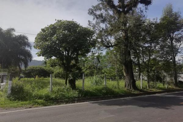 Foto de terreno habitacional en venta en  , cuautlapan, ixtaczoquitlán, veracruz de ignacio de la llave, 5914753 No. 02