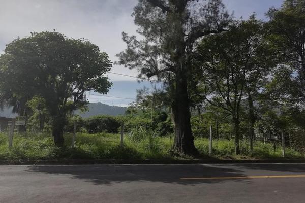 Foto de terreno habitacional en venta en  , cuautlapan, ixtaczoquitlán, veracruz de ignacio de la llave, 5914753 No. 03