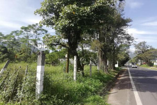 Foto de terreno habitacional en venta en  , cuautlapan, ixtaczoquitlán, veracruz de ignacio de la llave, 5914753 No. 04