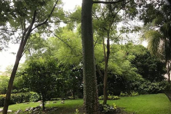 Foto de departamento en venta en  , cuernavaca centro, cuernavaca, morelos, 7949380 No. 19
