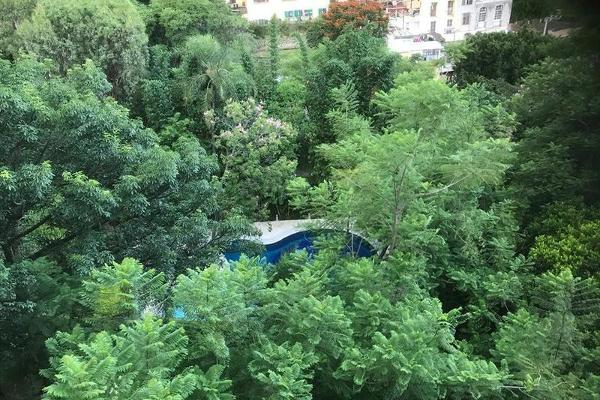 Foto de departamento en venta en  , cuernavaca centro, cuernavaca, morelos, 7949380 No. 20