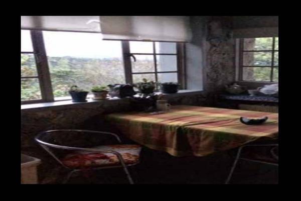Foto de rancho en venta en  , cuetzalan del progreso, cuetzalan del progreso, puebla, 16347822 No. 34