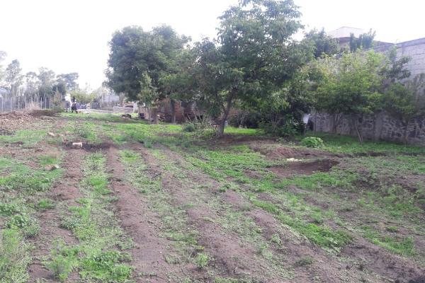 Foto de terreno habitacional en venta en cuitlahuac 15 , santa maría atlihuetzian, yauhquemehcan, tlaxcala, 8113722 No. 04