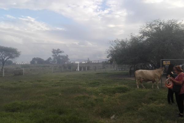 Foto de terreno habitacional en venta en cumbres de acultzingo , parques santa cruz del valle, san pedro tlaquepaque, jalisco, 6224100 No. 10