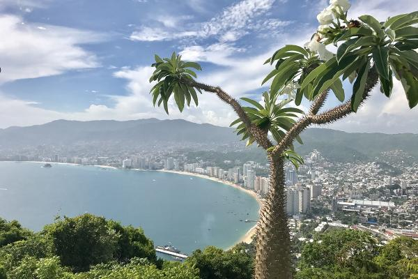 Foto de casa en renta en  , cumbres llano largo, acapulco de juárez, guerrero, 3505805 No. 46