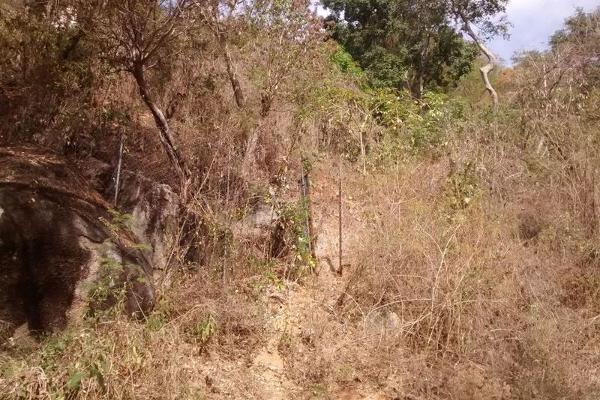 Foto de terreno habitacional en venta en  , cumbres llano largo, acapulco de juárez, guerrero, 7961405 No. 05