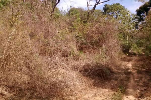 Foto de terreno habitacional en venta en  , cumbres llano largo, acapulco de juárez, guerrero, 7961405 No. 07