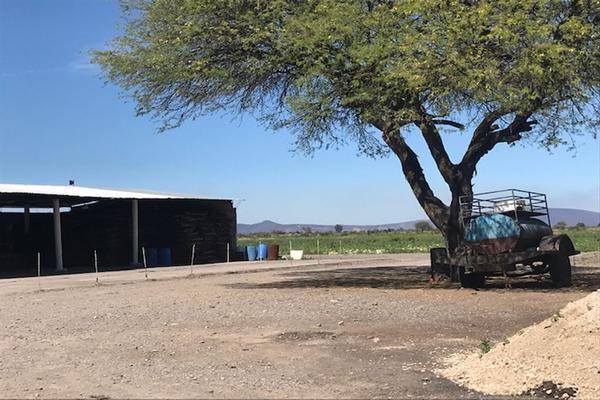 Foto de rancho en venta en cumuatillo , cumuatillo, venustiano carranza, michoacán de ocampo, 18716782 No. 31