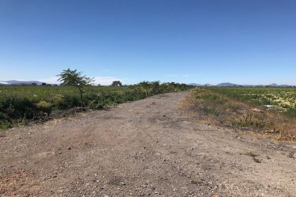 Foto de rancho en venta en cumuatillo , cumuatillo, venustiano carranza, michoacán de ocampo, 18716782 No. 47