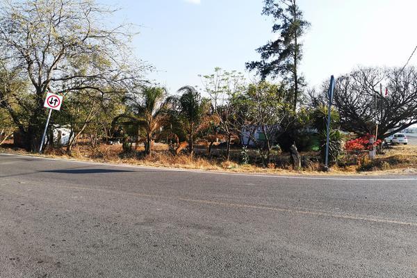Foto de terreno habitacional en venta en  , cumuatillo, venustiano carranza, michoacán de ocampo, 19971340 No. 04