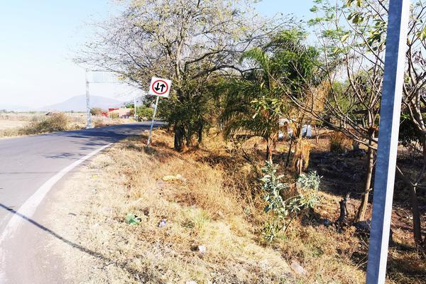 Foto de terreno habitacional en venta en  , cumuatillo, venustiano carranza, michoacán de ocampo, 19971340 No. 05
