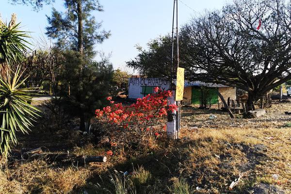 Foto de terreno habitacional en venta en  , cumuatillo, venustiano carranza, michoacán de ocampo, 19971340 No. 09