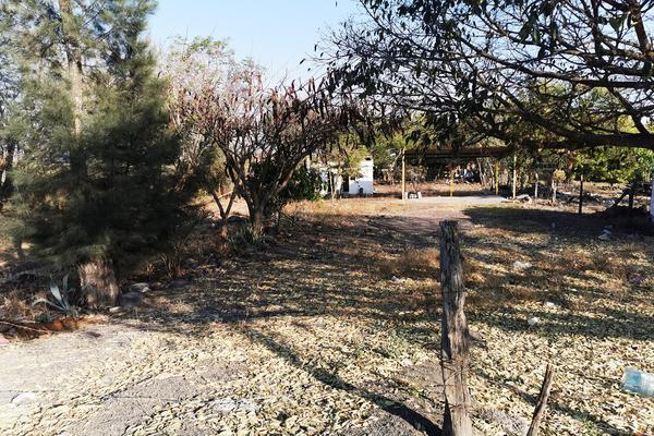Foto de terreno habitacional en venta en  , cumuatillo, venustiano carranza, michoacán de ocampo, 19971340 No. 17