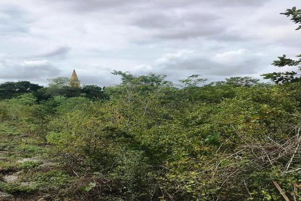 Foto de terreno habitacional en venta en  , cuzama, cuzamá, yucatán, 7861140 No. 02