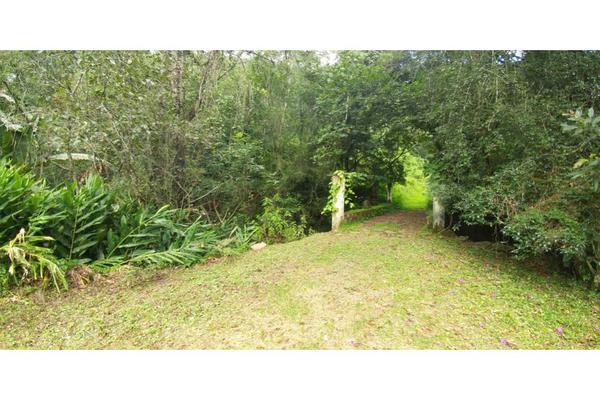 Foto de rancho en venta en  , de doña rosa, temascaltepec, méxico, 5859990 No. 19