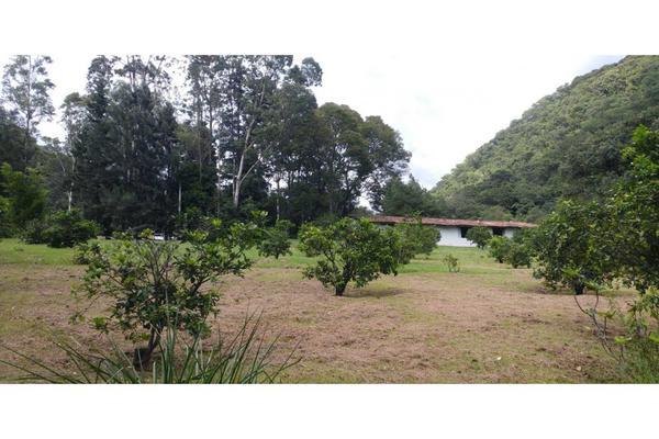 Foto de rancho en venta en  , de doña rosa, temascaltepec, méxico, 5859990 No. 22