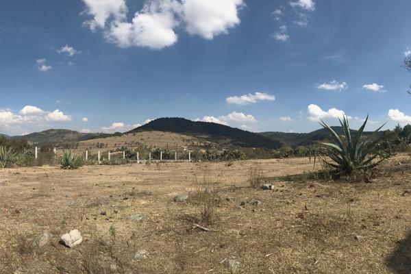 Foto de terreno habitacional en venta en de la primaria , san pedro de los metates, acambay, m?xico, 3081379 No. 07