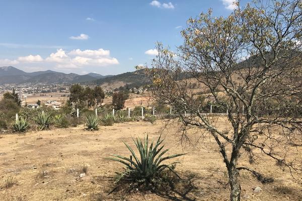 Foto de terreno habitacional en venta en de la primaria , san pedro de los metates, acambay, m?xico, 3081379 No. 09