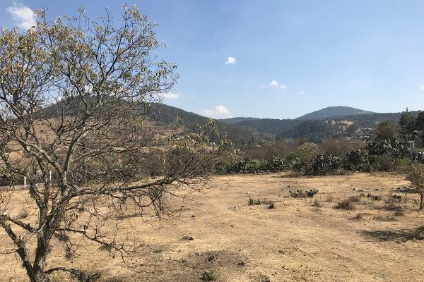 Foto de terreno habitacional en venta en de la primaria , san pedro de los metates, acambay, méxico, 3081379 No. 10