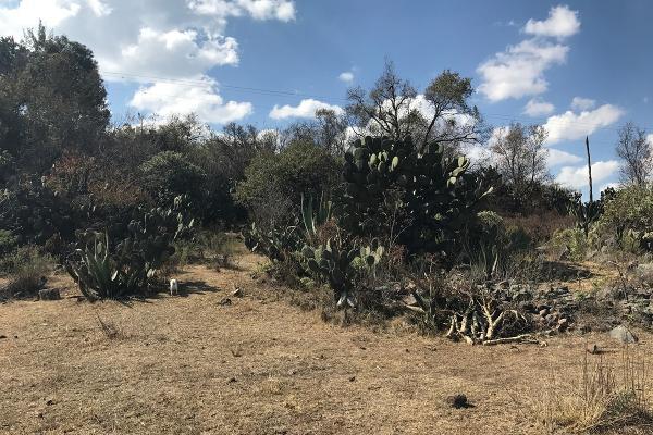 Foto de terreno habitacional en venta en de la primaria , san pedro de los metates, acambay, méxico, 3081379 No. 11