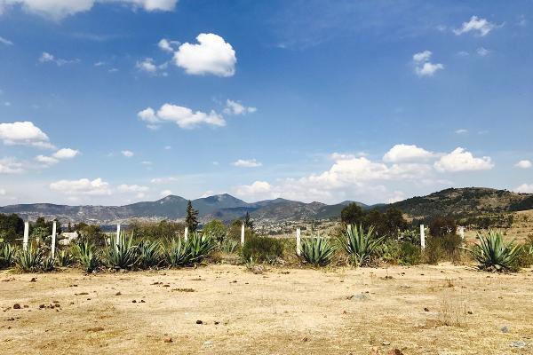 Foto de terreno habitacional en venta en de la primaria , san pedro de los metates, acambay, méxico, 3081379 No. 12