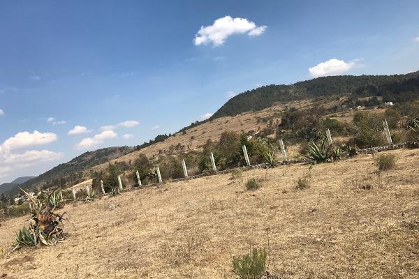 Foto de terreno habitacional en venta en de la primaria , san pedro de los metates, acambay, méxico, 3081379 No. 06