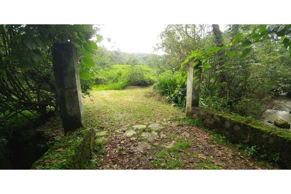 Foto de rancho en venta en  , de santiago, temascaltepec, méxico, 5859990 No. 08
