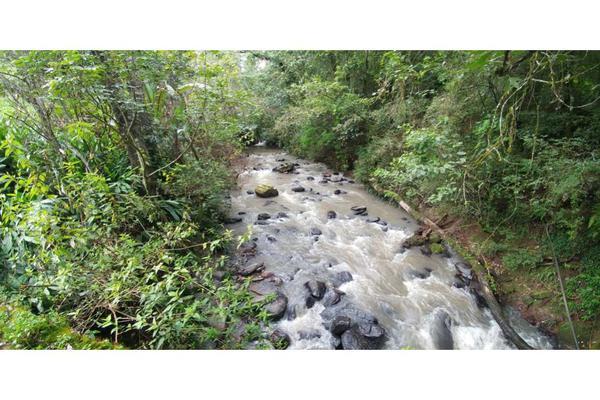 Foto de rancho en venta en  , de santiago, temascaltepec, méxico, 5859990 No. 15