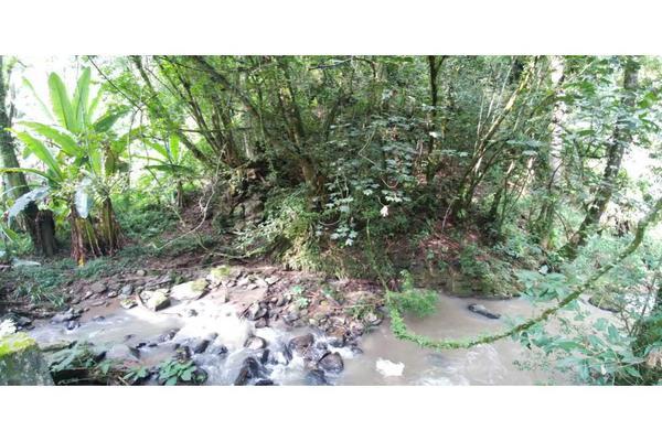 Foto de rancho en venta en  , de santiago, temascaltepec, méxico, 5859990 No. 18