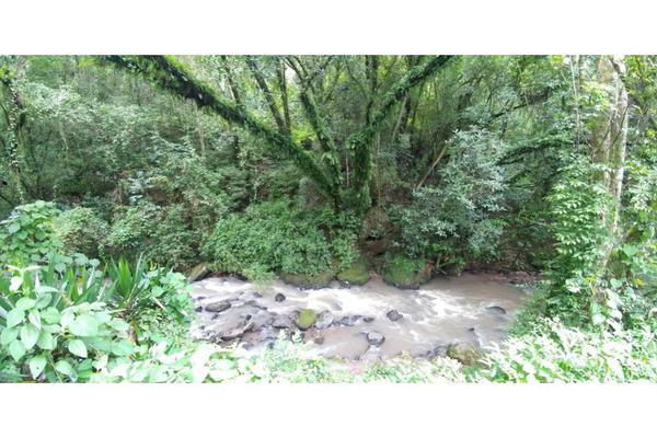 Foto de rancho en venta en  , de santiago, temascaltepec, méxico, 5859990 No. 20