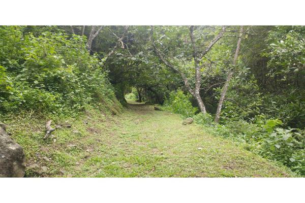 Foto de rancho en venta en  , de santiago, temascaltepec, méxico, 5859990 No. 27