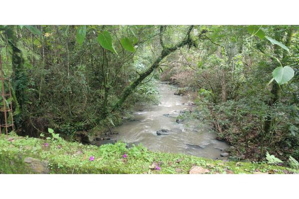 Foto de rancho en venta en  , de santiago, temascaltepec, méxico, 5859990 No. 28