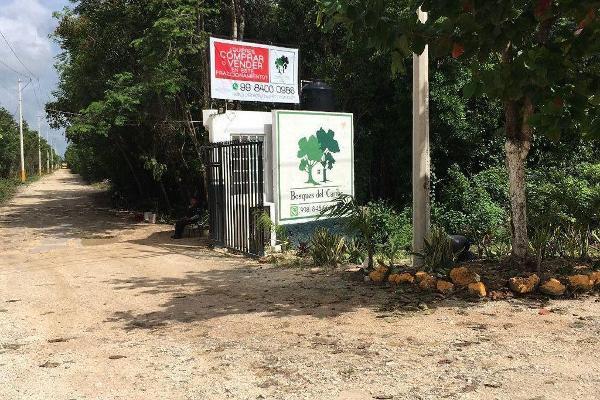 Foto de terreno habitacional en venta en  , del bosque, benito juárez, quintana roo, 9511736 No. 04