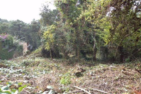 Foto de terreno habitacional en venta en  , del bosque, cuernavaca, morelos, 9915967 No. 04