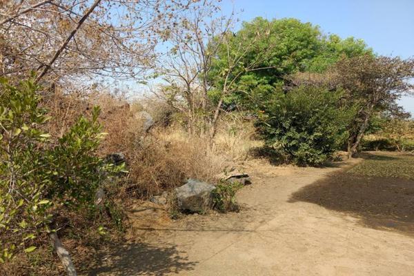Foto de terreno habitacional en venta en del ejido 100, san miguel acapantzingo, cuernavaca, morelos, 13008273 No. 02