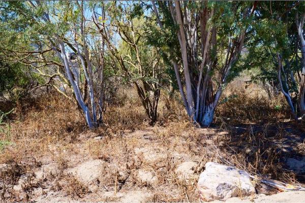 Foto de terreno habitacional en venta en del fuego 0, la fuente, la paz, baja california sur, 2687345 No. 08