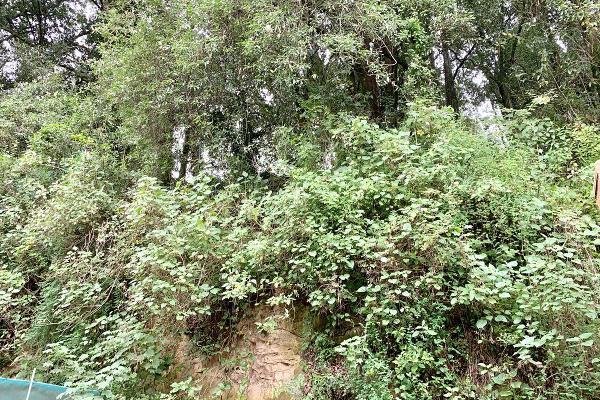 Foto de casa en renta en  , delegación política cuajimalpa de morelos, cuajimalpa de morelos, df / cdmx, 9921503 No. 24