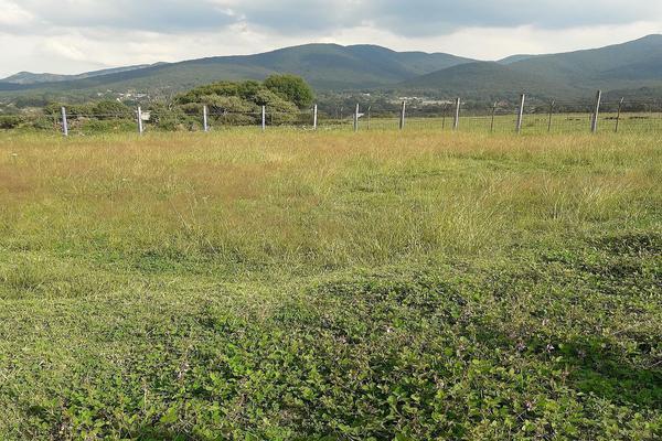 Foto de terreno habitacional en venta en  , dexcani alto, jilotepec, méxico, 5705144 No. 01