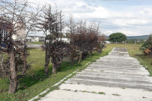 Foto de terreno habitacional en venta en  , dexcani alto, jilotepec, méxico, 5705144 No. 06