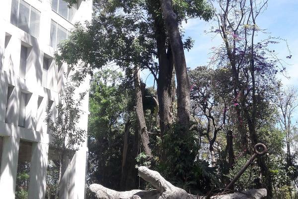 Foto de departamento en renta en diagonal san jorge , vallarta san jorge, guadalajara, jalisco, 5356818 No. 03