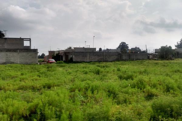 Foto de terreno habitacional en venta en diego rivera 1, ozumba de alzate, ozumba, méxico, 0 No. 02