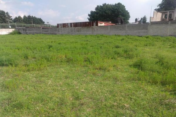 Foto de terreno habitacional en venta en diego rivera 1, ozumba de alzate, ozumba, méxico, 0 No. 03