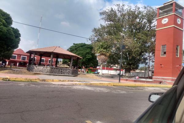 Foto de terreno habitacional en venta en diego rivera 1, ozumba de alzate, ozumba, méxico, 0 No. 07