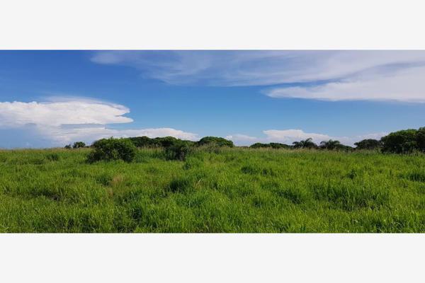 Foto de terreno habitacional en venta en dom conocido 000, el bayo, alvarado, veracruz de ignacio de la llave, 5663064 No. 07