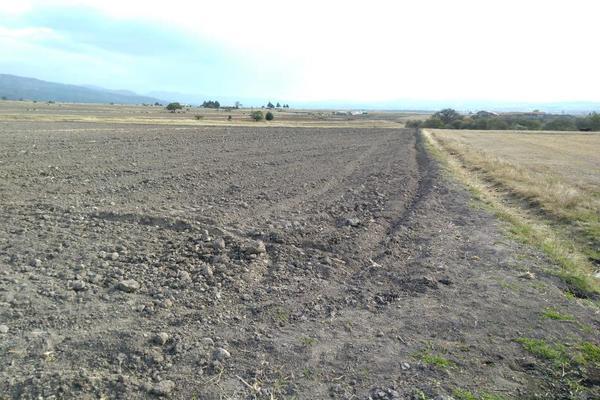 Foto de terreno habitacional en venta en domicilio conocido 0, matlahuacales de aquiles serdán, chignahuapan, puebla, 10004456 No. 05