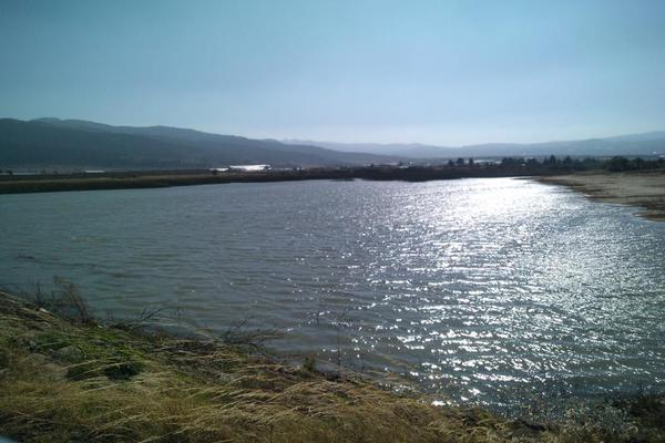 Foto de terreno habitacional en venta en domicilio conocido 0, matlahuacales de aquiles serdán, chignahuapan, puebla, 10004456 No. 06