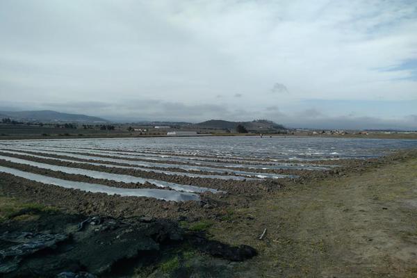 Foto de terreno habitacional en venta en domicilio conocido 0, matlahuacales de aquiles serdán, chignahuapan, puebla, 10004456 No. 19
