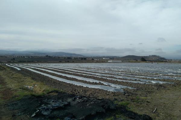 Foto de terreno habitacional en venta en domicilio conocido 0, matlahuacales de aquiles serdán, chignahuapan, puebla, 10004456 No. 20