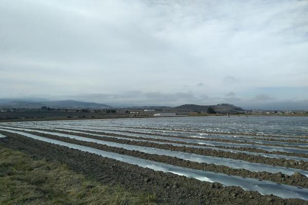 Foto de terreno habitacional en venta en domicilio conocido 0, matlahuacales de aquiles serdán, chignahuapan, puebla, 10004456 No. 22