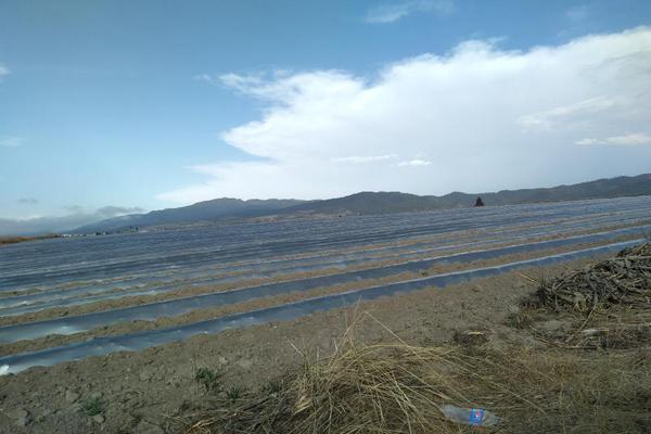 Foto de terreno habitacional en venta en domicilio conocido 0, matlahuacales de aquiles serdán, chignahuapan, puebla, 10004456 No. 24